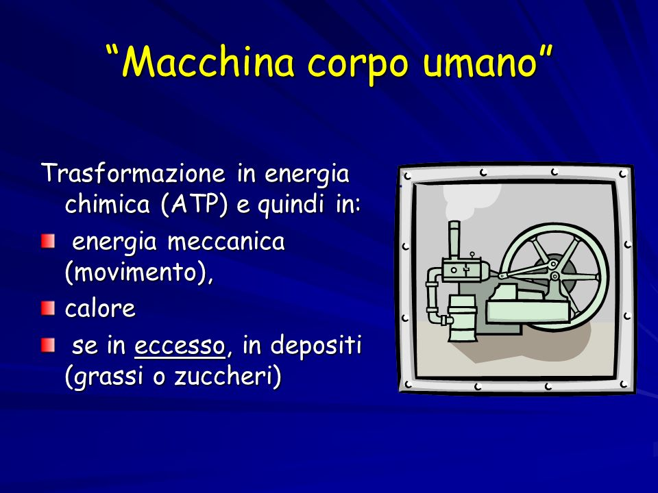 Macchina corpo umano Trasformazione in energia chimica (ATP) e quindi in: energia meccanica (movimento), energia meccanica (movimento),calore se in eccesso, in depositi (grassi o zuccheri) se in eccesso, in depositi (grassi o zuccheri)
