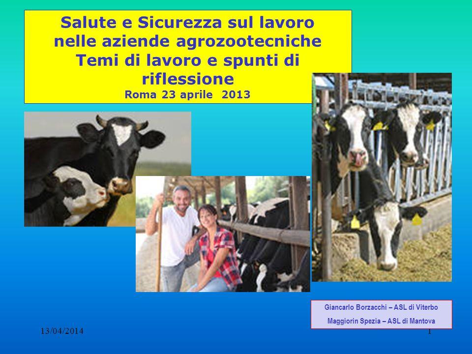 13/04/20141 Salute e Sicurezza sul lavoro nelle aziende agrozootecniche Temi di lavoro e spunti di riflessione Roma 23 aprile 2013 Giancarlo Borzacchi