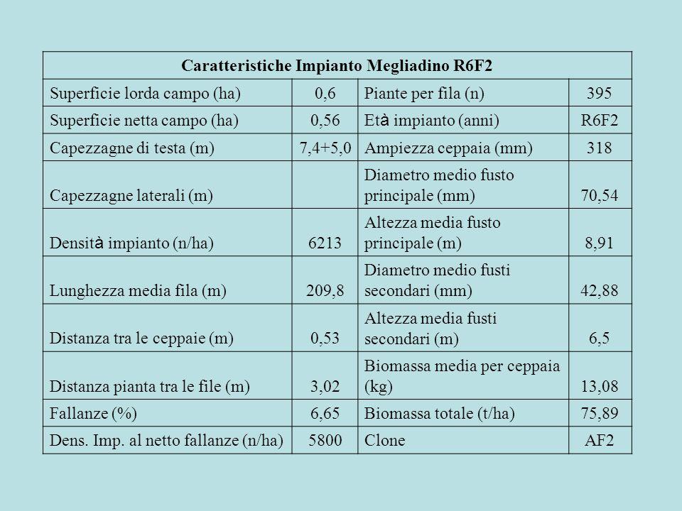 Caratteristiche Impianto Megliadino R6F2 Superficie lorda campo (ha)0,6Piante per fila (n)395 Superficie netta campo (ha)0,56 Et à impianto (anni) R6F