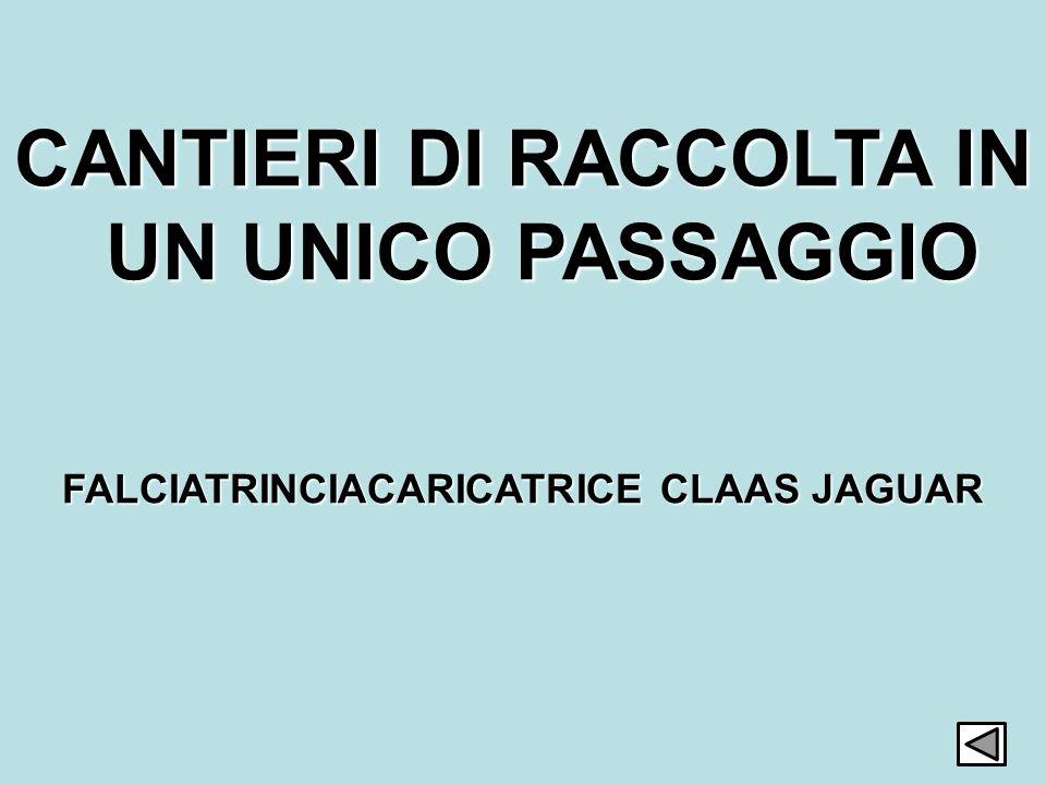 7 CANTIERI DI RACCOLTA IN UN UNICO PASSAGGIO FALCIATRINCIACARICATRICE CLAAS JAGUAR