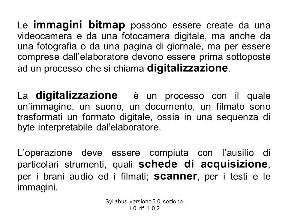 Syllabus versione 5.0 sezione 1.0 rif 1.0.2 Le immagini bitmap possono essere create da una videocamera e da una fotocamera digitale, ma anche da una