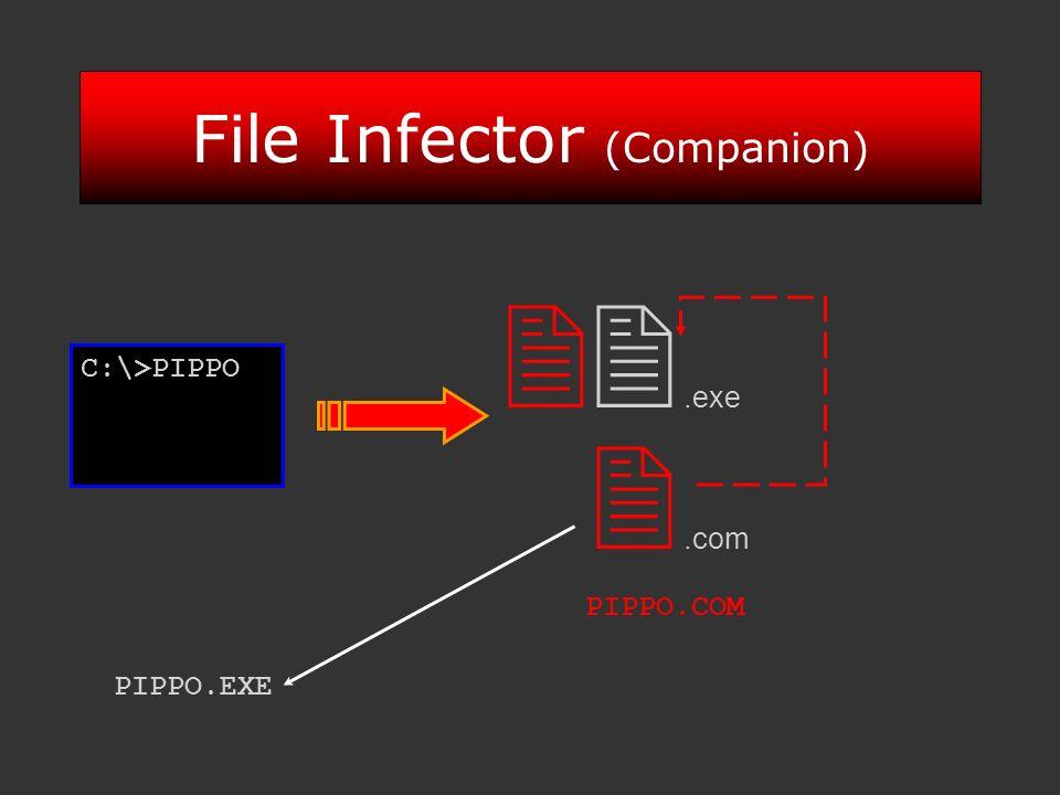 File Infector (Companion).exe.com PIPPO.COM PIPPO.EXE C:\>PIPPO