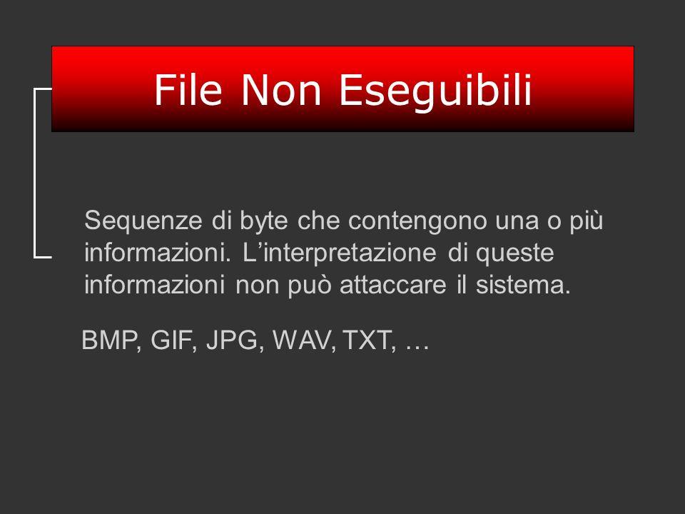 File Non Eseguibili Sequenze di byte che contengono una o più informazioni. Linterpretazione di queste informazioni non può attaccare il sistema. BMP,