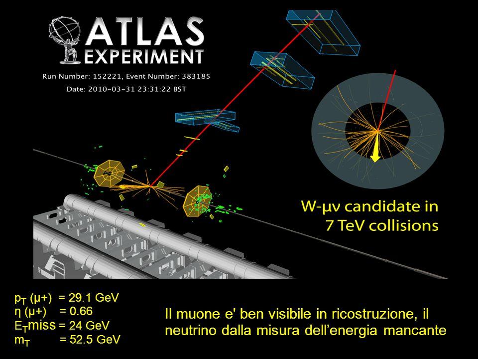 p T (µ+) = 29.1 GeV η (µ+) = 0.66 E T miss = 24 GeV m T = 52.5 GeV Il muone e' ben visibile in ricostruzione, il neutrino dalla misura dellenergia man