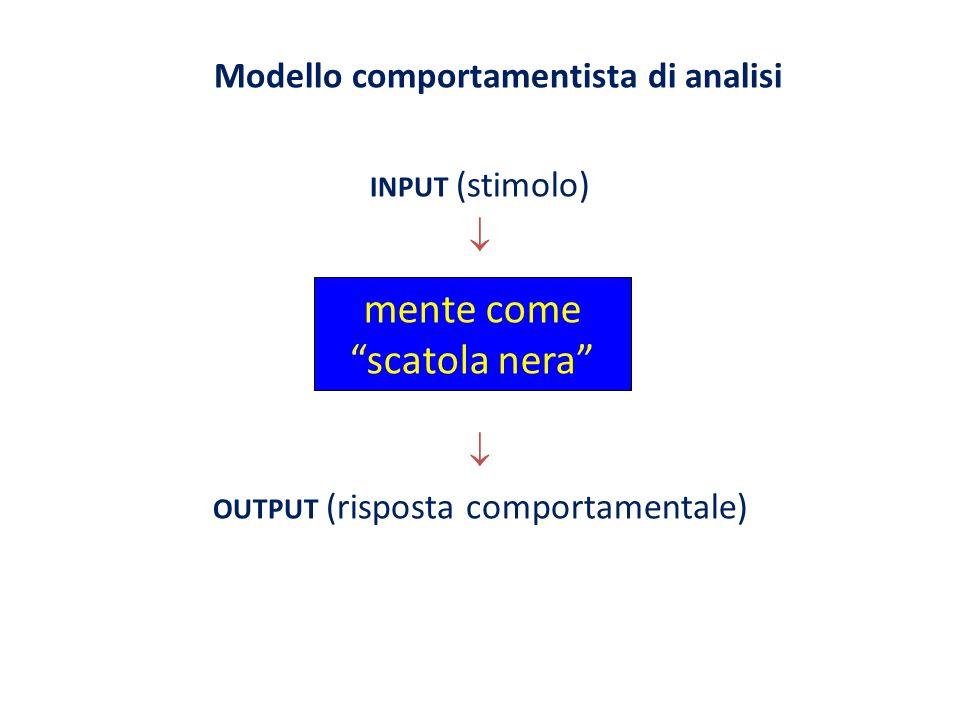 Modello comportamentista di analisi INPUT (stimolo) OUTPUT (risposta comportamentale) mente come scatola nera