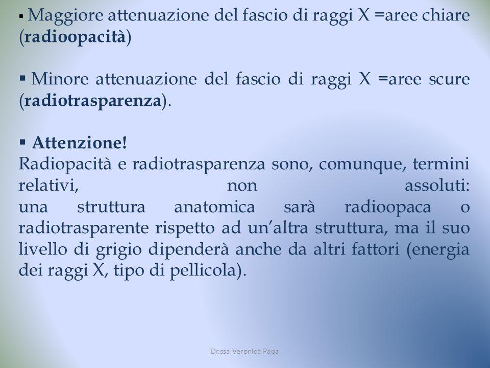 Dr.ssa Veronica Papa Maggiore attenuazione del fascio di raggi X =aree chiare ( radioopacità ) Minore attenuazione del fascio di raggi X =aree scure ( radiotrasparenza ).