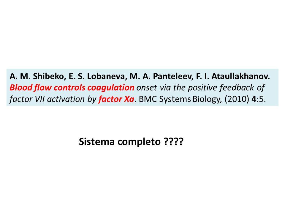 A. M. Shibeko, E. S. Lobaneva, M. A. Panteleev, F. I. Ataullakhanov. Blood flow controls coagulation onset via the positive feedback of factor VII act