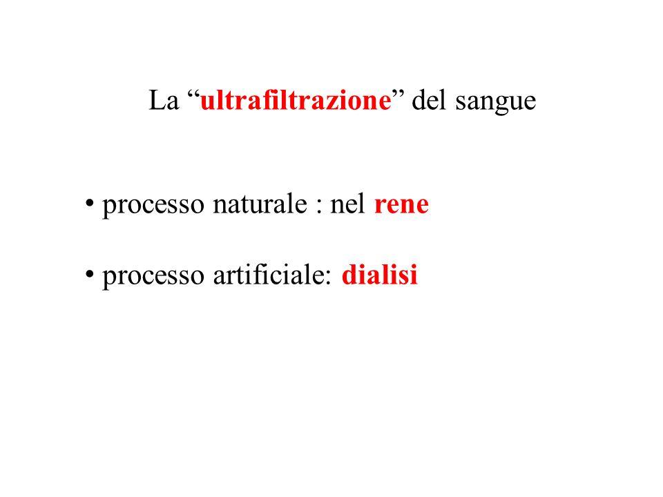 processo naturale : nel rene processo artificiale: dialisi