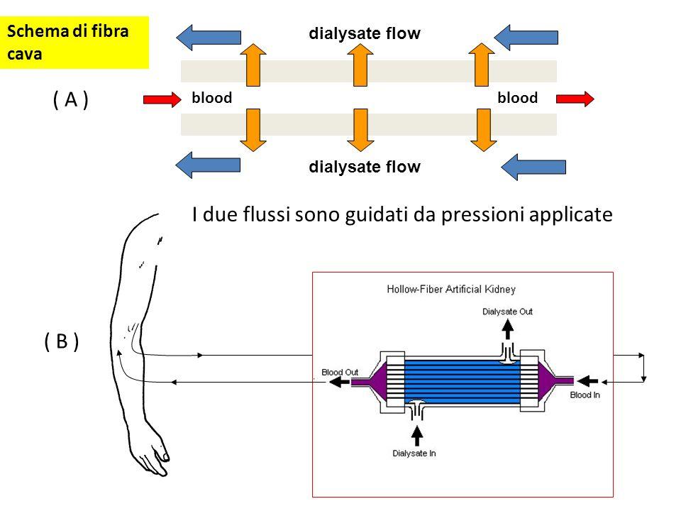 ( B ) dialysate flow ( A ) dialysate flow blood I due flussi sono guidati da pressioni applicate Schema di fibra cava