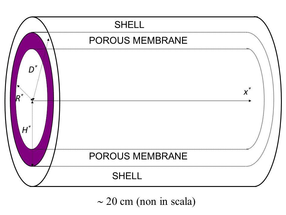 D*D* x*x* H*H* R*R* POROUS MEMBRANE SHELL 20 cm (non in scala)