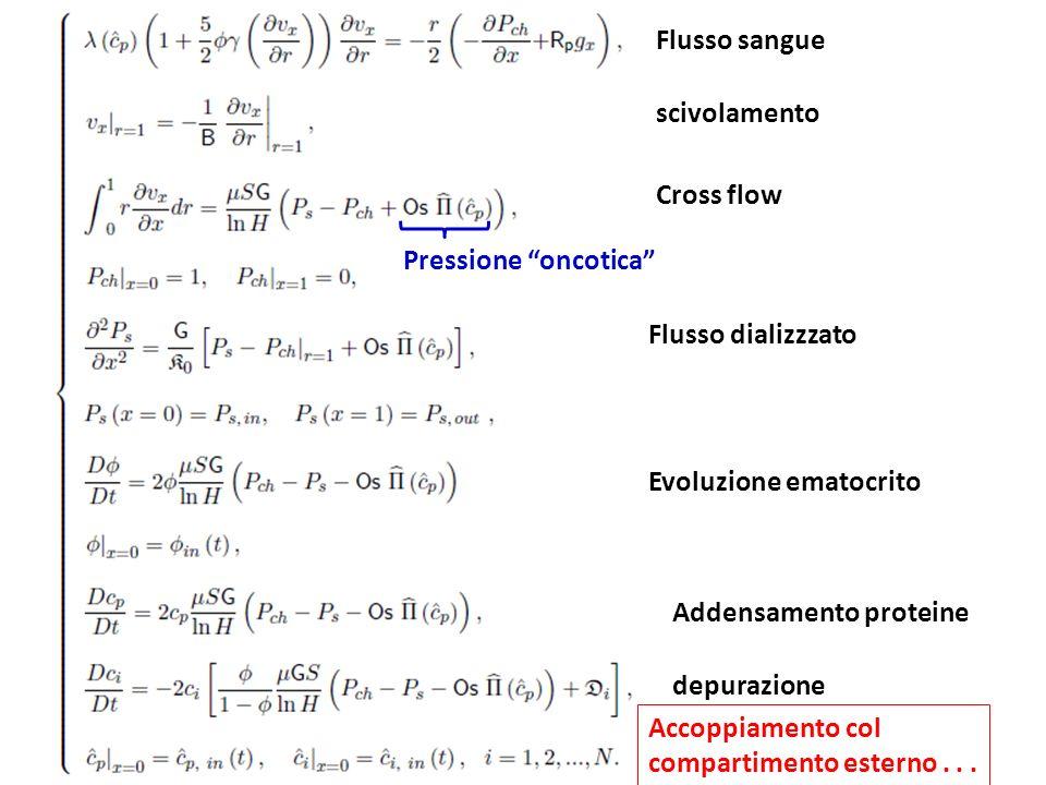 Flusso sangue scivolamento Cross flow Flusso dializzzato Evoluzione ematocrito Addensamento proteine depurazione Accoppiamento col compartimento ester