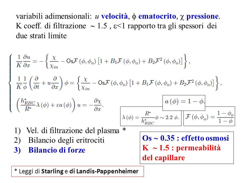 variabili adimensionali: u velocità, ematocrito, pressione. K coeff. di filtrazione 1.5, <1 rapporto tra gli spessori dei due strati limite 1)Vel. di