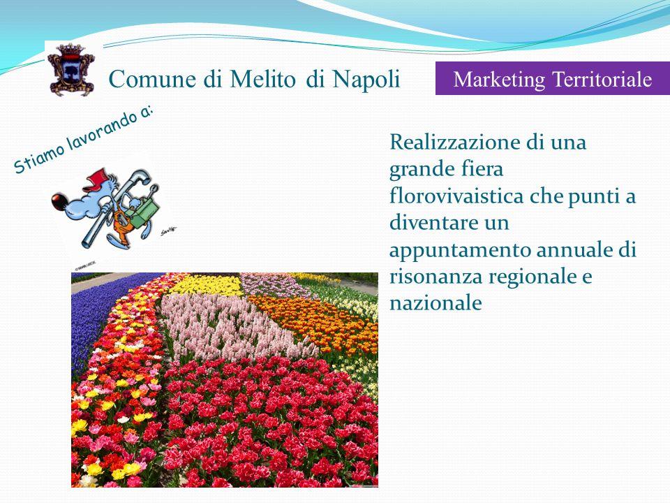 Comune di Melito di Napoli Marketing Territoriale Stiamo lavorando a: Realizzazione di una grande fiera florovivaistica che punti a diventare un appuntamento annuale di risonanza regionale e nazionale