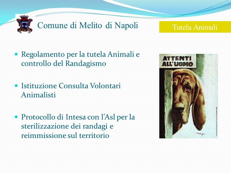 Comune di Melito di Napoli Regolamento per la tutela Animali e controllo del Randagismo Istituzione Consulta Volontari Animalisti Protocollo di Intesa con lAsl per la sterilizzazione dei randagi e reimmissione sul territorio Tutela Animali