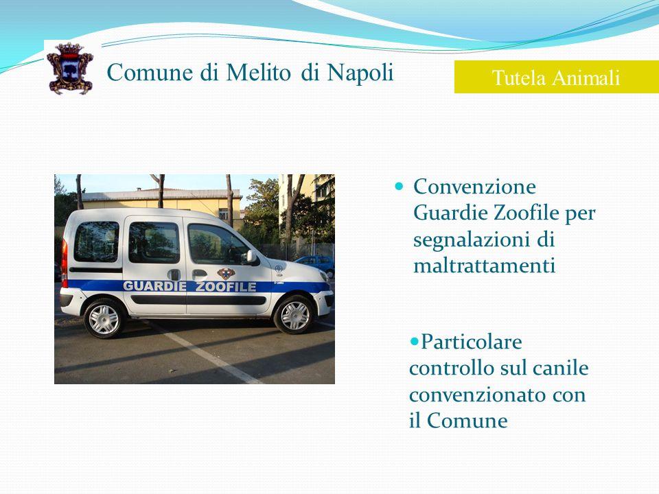 Comune di Melito di Napoli Convenzione Guardie Zoofile per segnalazioni di maltrattamenti Tutela Animali Particolare controllo sul canile convenzionato con il Comune