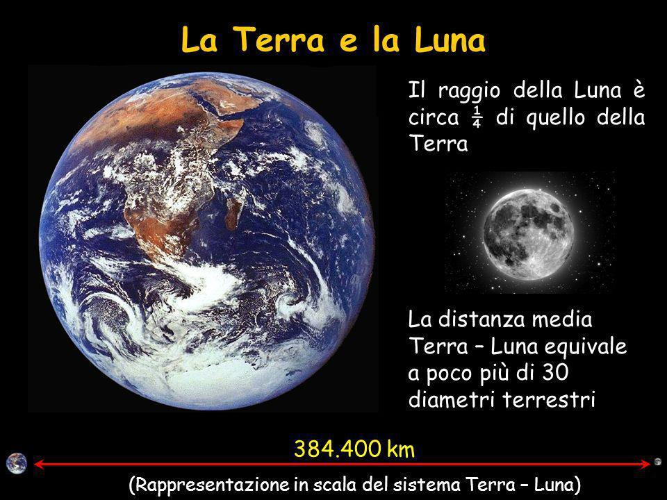 La Terra e la Luna Il raggio della Luna è circa ¼ di quello della Terra 384.400 km (Rappresentazione in scala del sistema Terra – Luna) La distanza media Terra – Luna equivale a poco più di 30 diametri terrestri