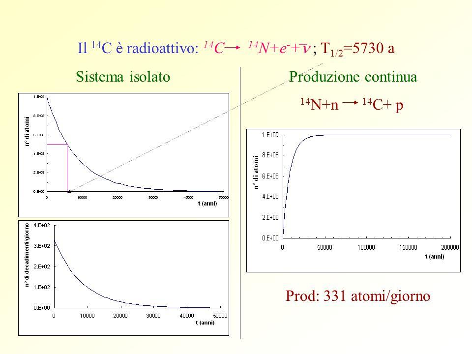 Il 14 C è radioattivo: 14 C 14 N+e - + ; T 1/2 =5730 a Sistema isolato Produzione continua 14 N+n 14 C+ p Prod: 331 atomi/giorno _