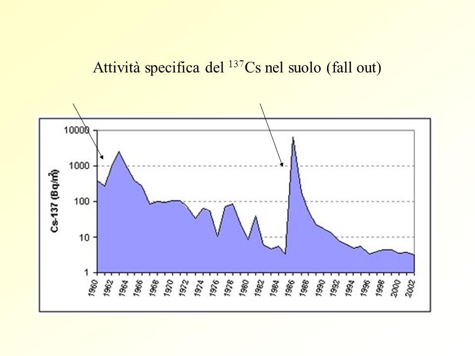 Attività specifica del 137 Cs nel suolo (fall out)