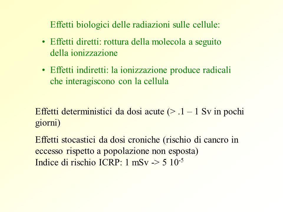 Effetti biologici delle radiazioni sulle cellule: Effetti diretti: rottura della molecola a seguito della ionizzazione Effetti indiretti: la ionizzazi