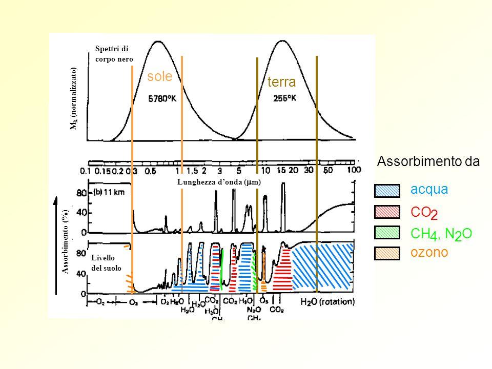 sole terra Assorbimento da acqua CO 2 CH 4, N 2 O ozono Spettri di corpo nero M (normalizzato) Assorbimento (%) Lunghezza donda ( m) Livello del suolo