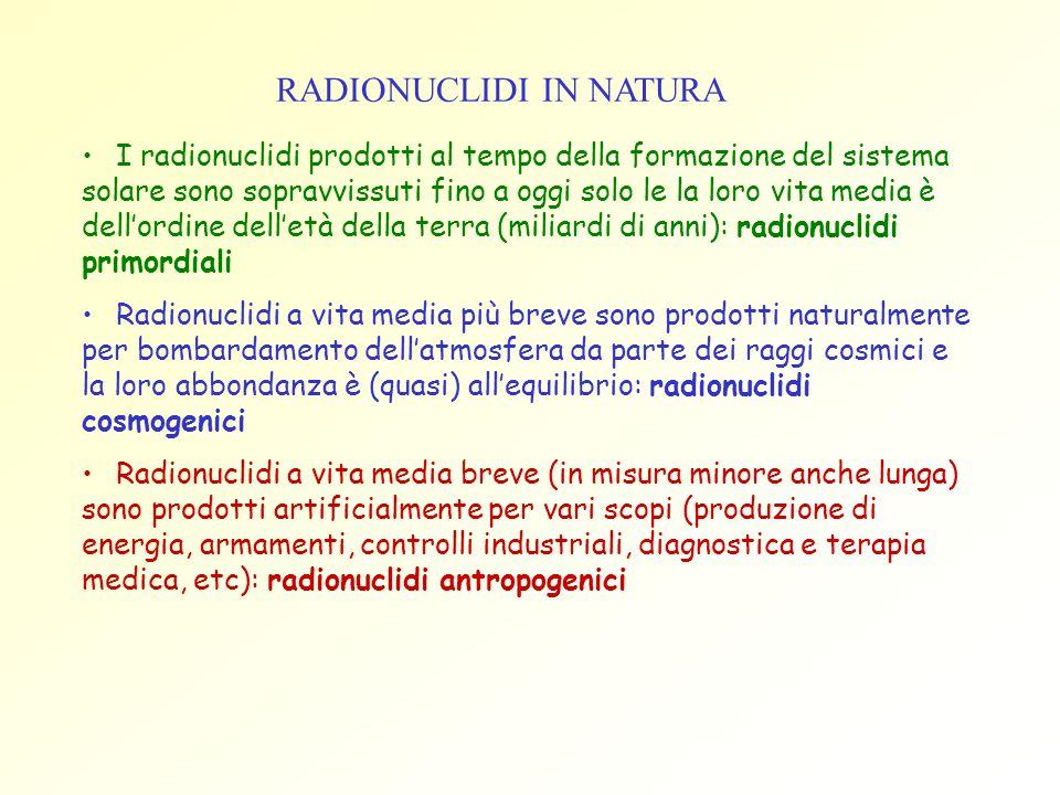 RADIONUCLIDI IN NATURA I radionuclidi prodotti al tempo della formazione del sistema solare sono sopravvissuti fino a oggi solo le la loro vita media