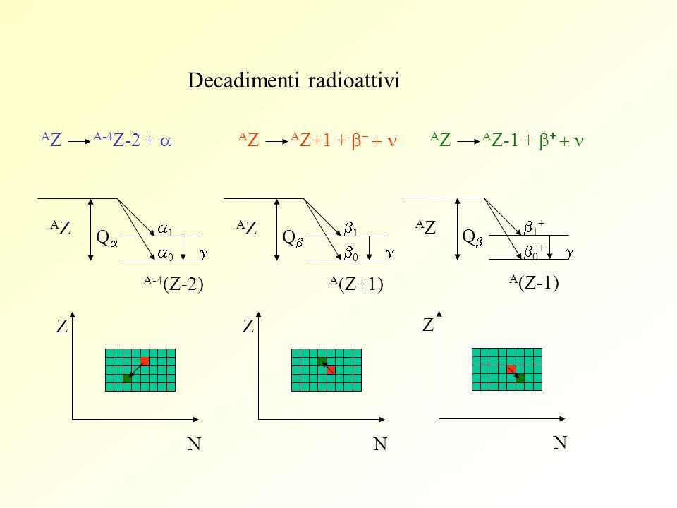 Decadimenti radioattivi AZAZ 1 0 A-4 (Z-2) Z N Q AZAZ 1 0 A (Z+1) Z N Q AZAZ 1 + 0 + A (Z-1) Z N Q A Z A-4 Z-2 + A Z A Z+1 + A Z A Z-1 +