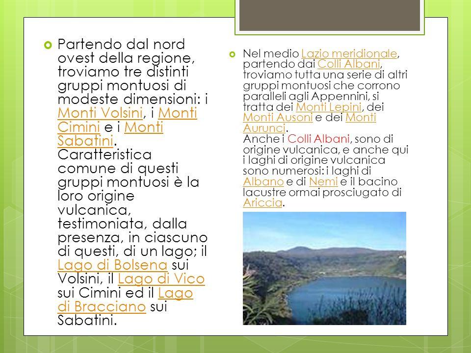 Partendo dal nord ovest della regione, troviamo tre distinti gruppi montuosi di modeste dimensioni: i Monti Volsini, i Monti Cimini e i Monti Sabatini