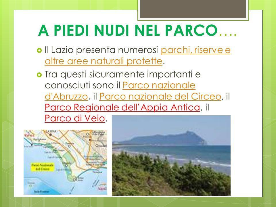 A PIEDI NUDI NEL PARCO …. Il Lazio presenta numerosi parchi, riserve e altre aree naturali protette.parchi, riserve e altre aree naturali protette Tra