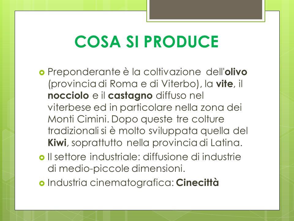 COSA SI PRODUCE Preponderante è la coltivazione dell' olivo (provincia di Roma e di Viterbo), la vite, il nocciolo e il castagno diffuso nel viterbese
