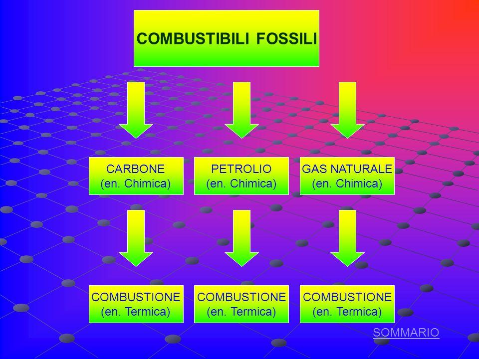COMBUSTIBILI FOSSILI CARBONE (en.Chimica) PETROLIO (en.