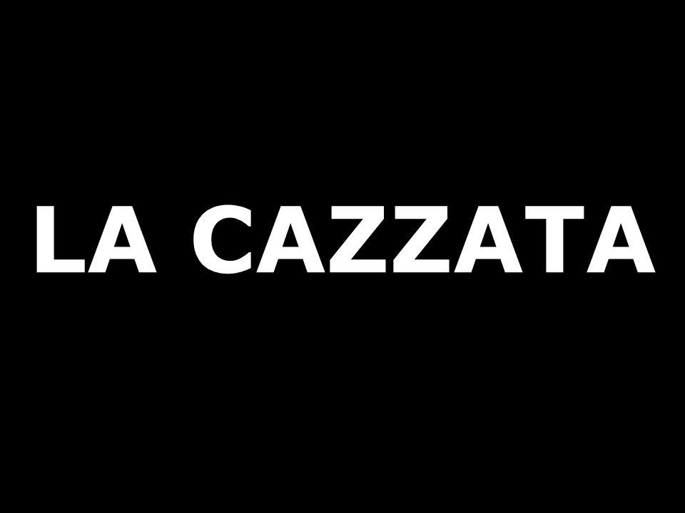 LA CAZZATA