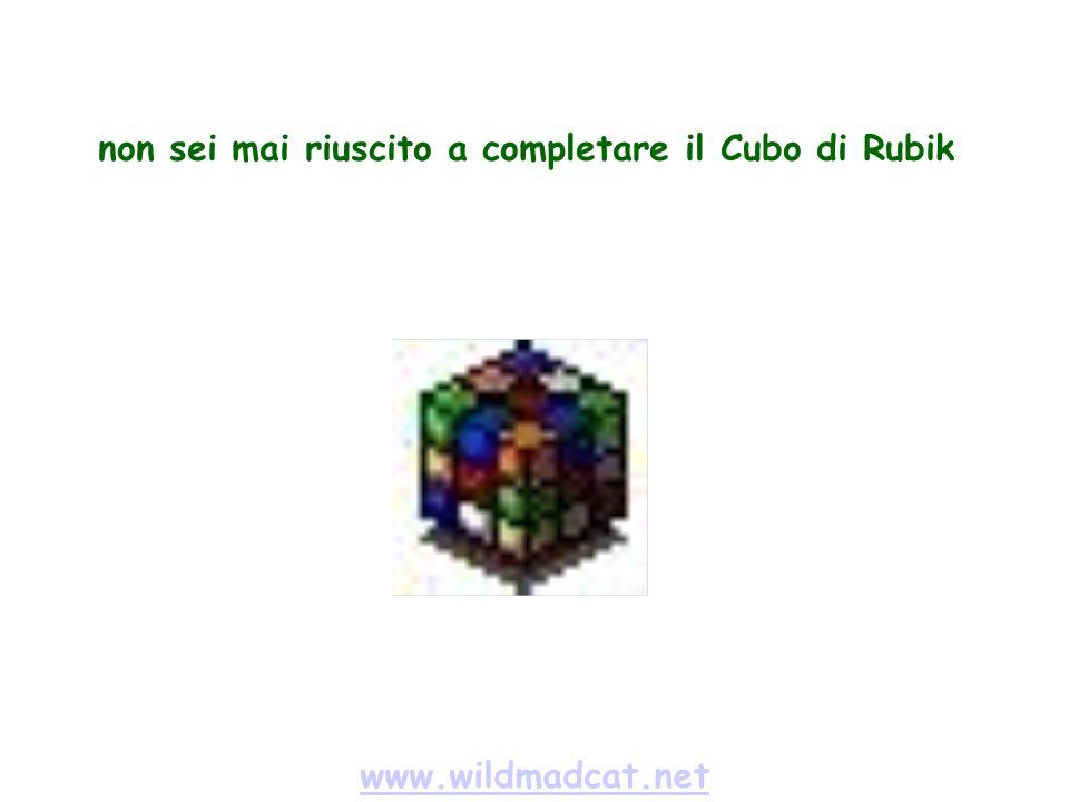 www.wildmadcat.net non sei mai riuscito a completare il Cubo di Rubik