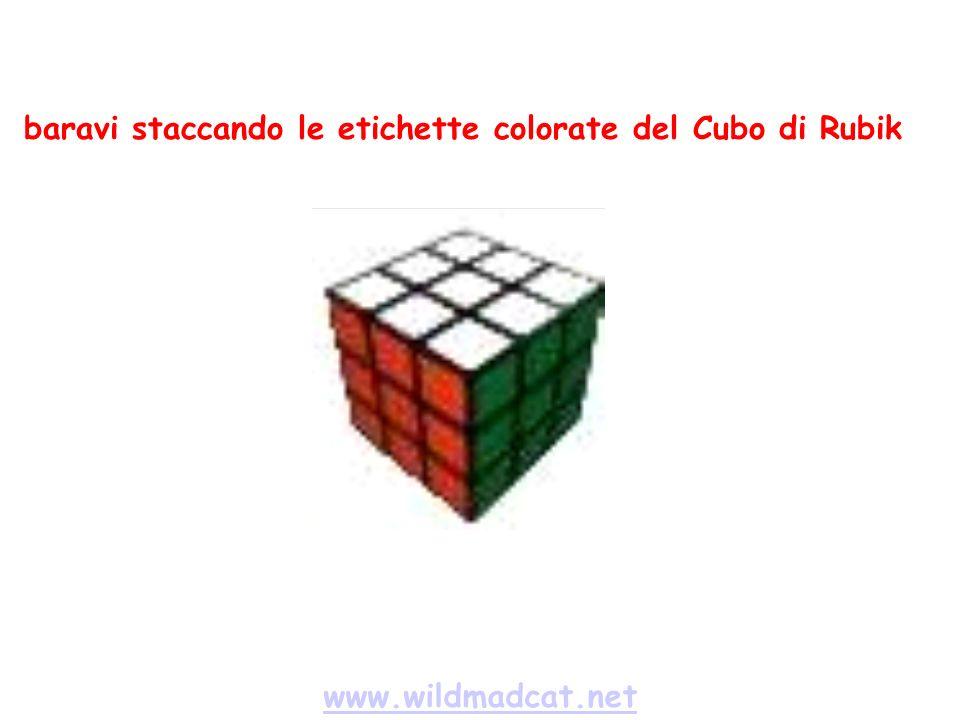 www.wildmadcat.net baravi staccando le etichette colorate del Cubo di Rubik