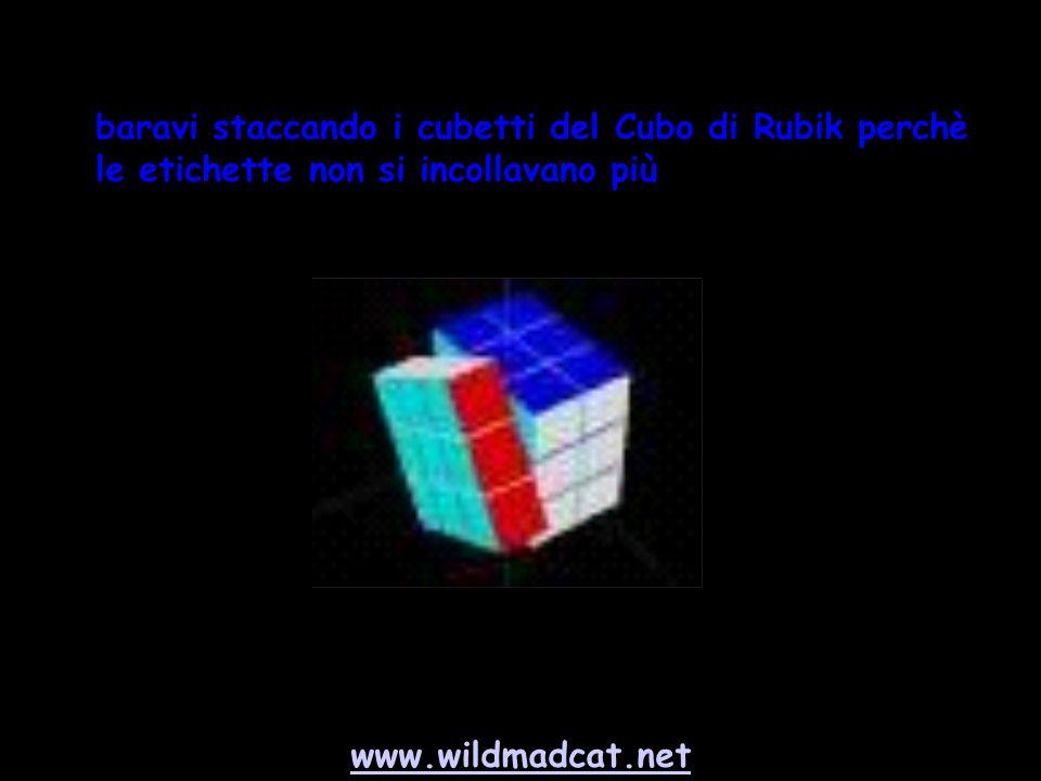 www.wildmadcat.net baravi staccando i cubetti del Cubo di Rubik perchè le etichette non si incollavano più