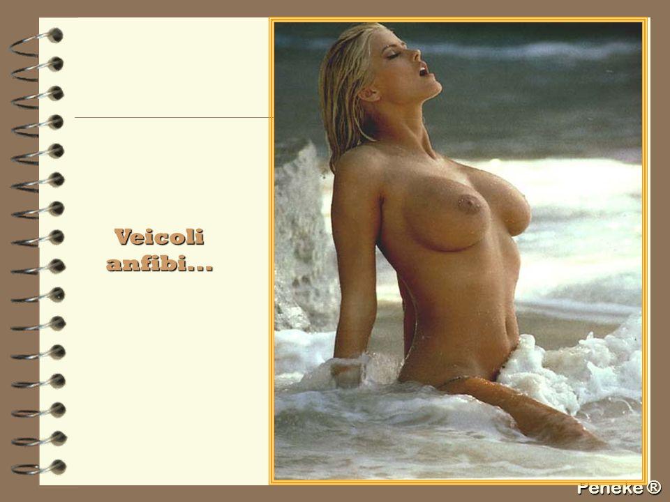 Peneke ® Veicoli anfibi...