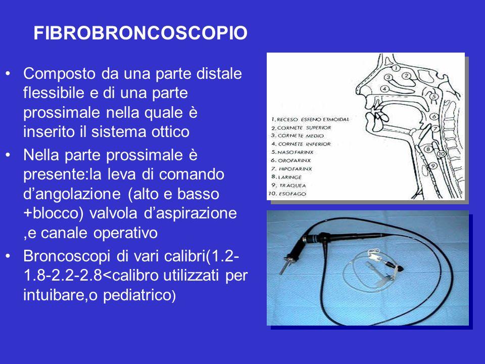 Composto da una parte distale flessibile e di una parte prossimale nella quale è inserito il sistema ottico Nella parte prossimale è presente:la leva