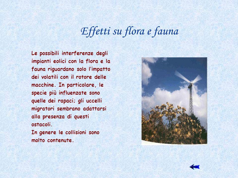 Effetti su flora e fauna Le possibili interferenze degli impianti eolici con la flora e la fauna riguardano solo limpatto dei volatili con il rotore d