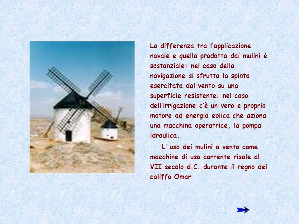 Effetti su flora e fauna Le possibili interferenze degli impianti eolici con la flora e la fauna riguardano solo limpatto dei volatili con il rotore delle macchine.