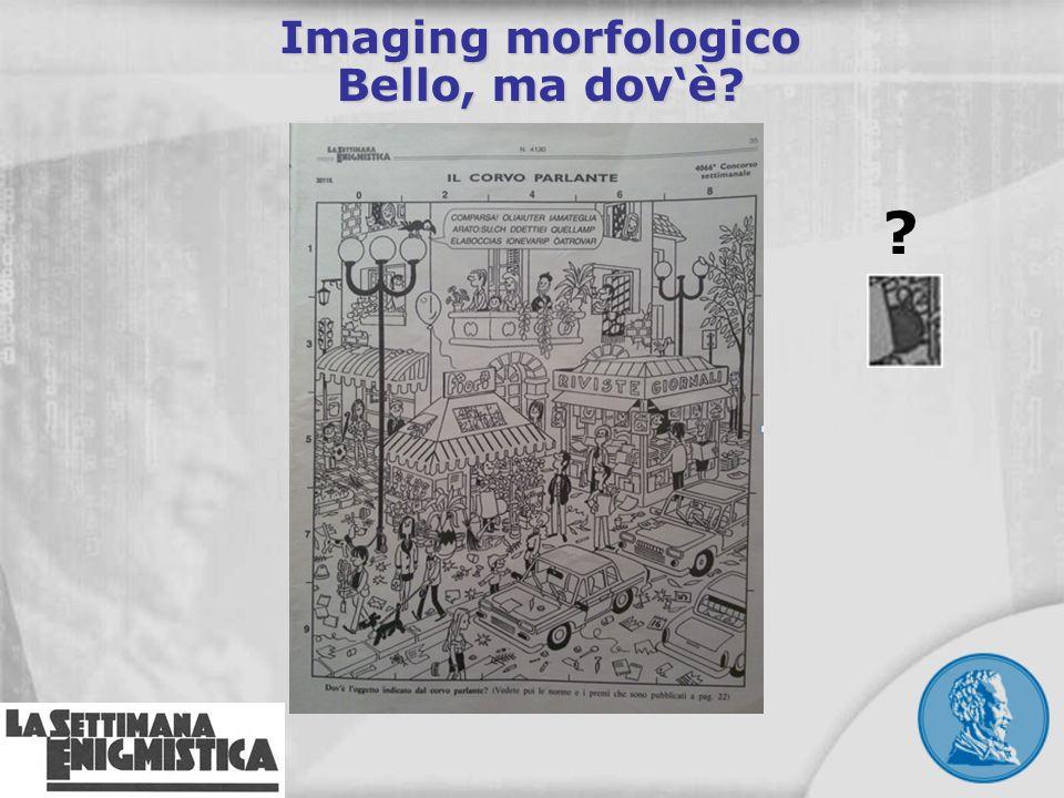 Imaging morfologico Bello, ma dovè? ?