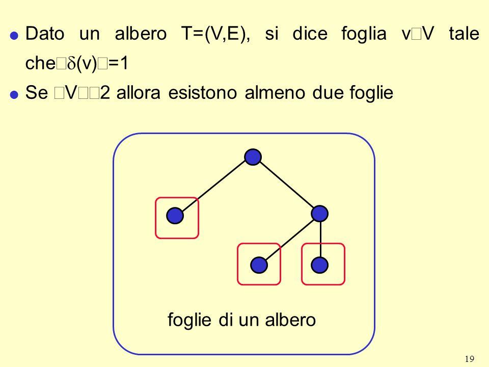 19 Dato un albero T=(V,E), si dice foglia v V tale che (v) =1 Se V 2 allora esistono almeno due foglie foglie di un albero