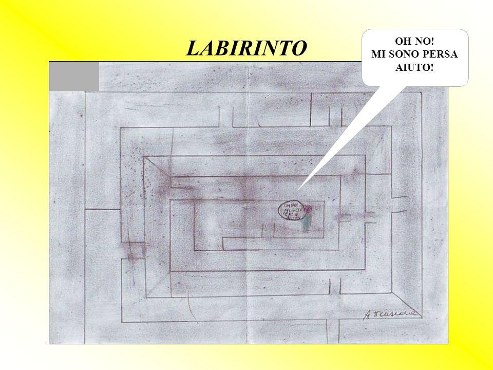 LABIRINTO OH NO! MI SONO PERSA AIUTO!