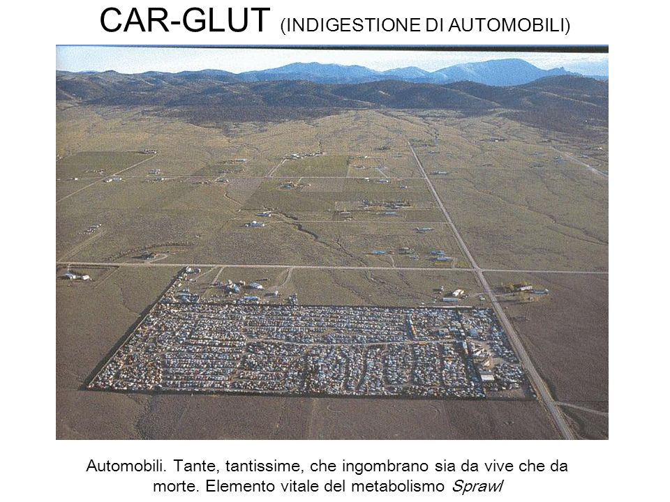 CAR-GLUT (INDIGESTIONE DI AUTOMOBILI) Automobili. Tante, tantissime, che ingombrano sia da vive che da morte. Elemento vitale del metabolismo Sprawl
