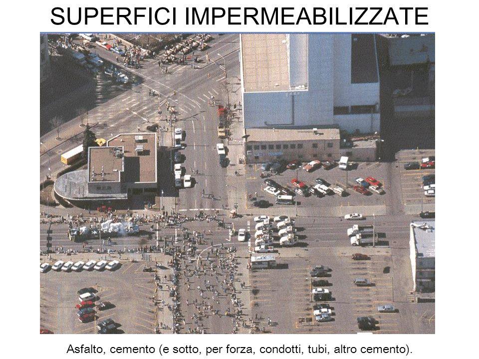 SUPERFICI IMPERMEABILIZZATE Asfalto, cemento (e sotto, per forza, condotti, tubi, altro cemento).