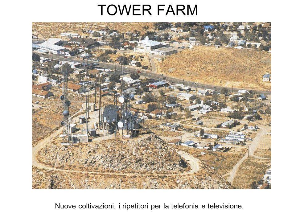 TOWER FARM Nuove coltivazioni: i ripetitori per la telefonia e televisione.
