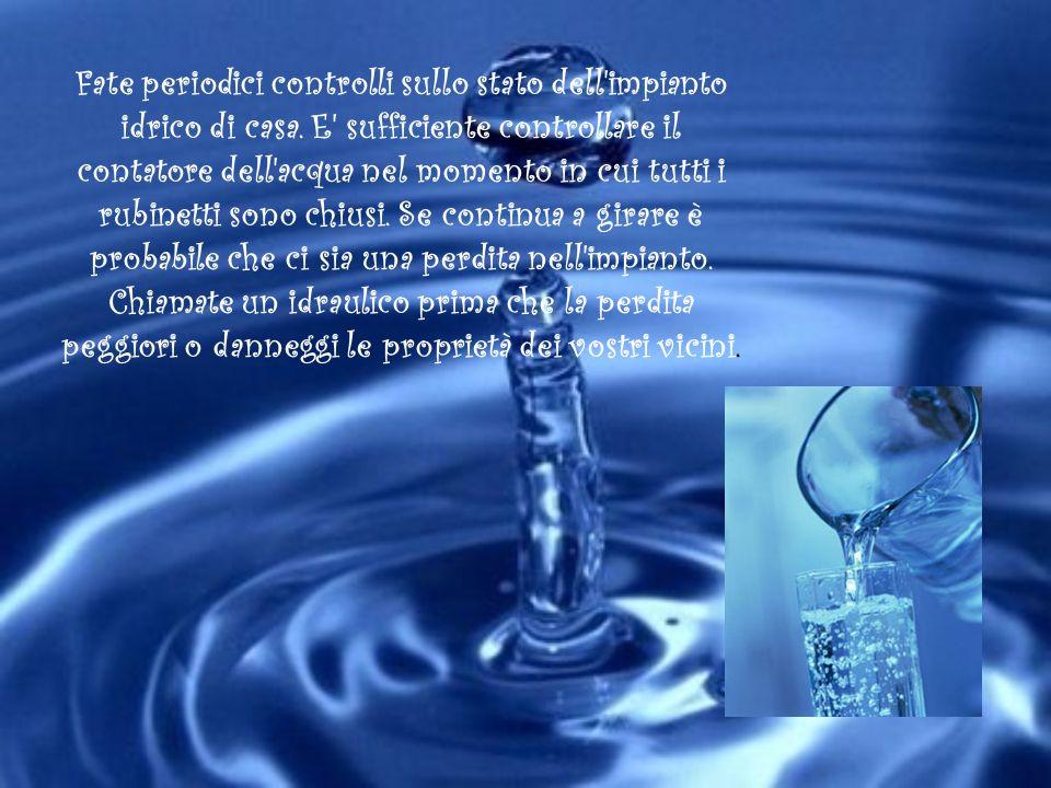 Fate periodici controlli sullo stato dell'impianto idrico di casa. E' sufficiente controllare il contatore dell'acqua nel momento in cui tutti i rubin