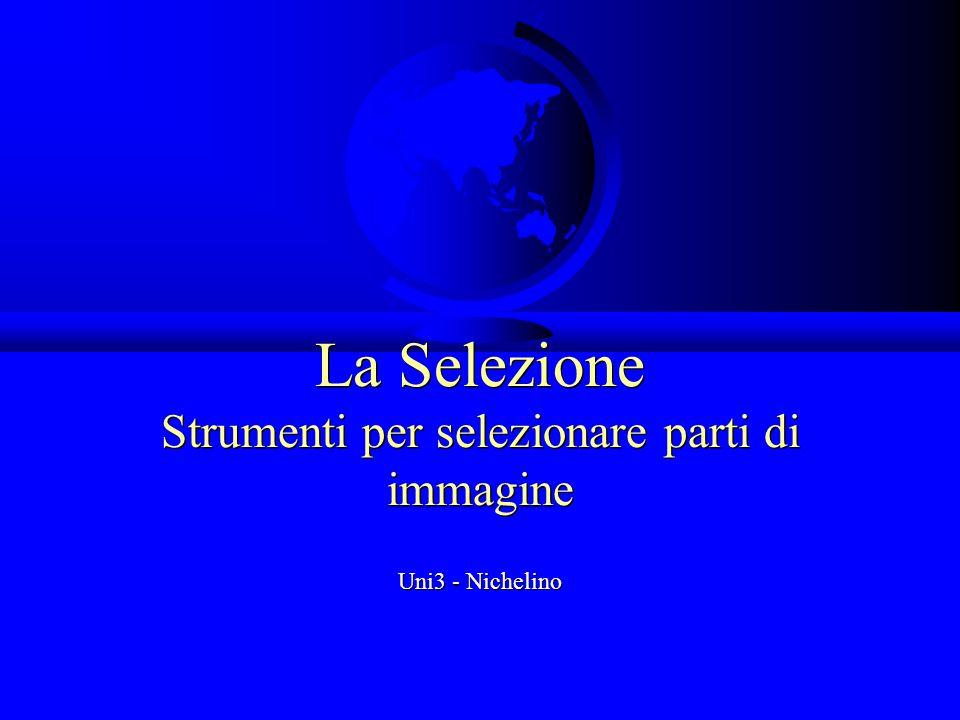 La Selezione Strumenti per selezionare parti di immagine Uni3 - Nichelino