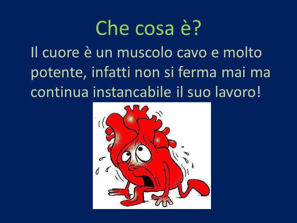 Che cosa è? Il cuore è un muscolo cavo e molto potente, infatti non si ferma mai ma continua instancabile il suo lavoro!
