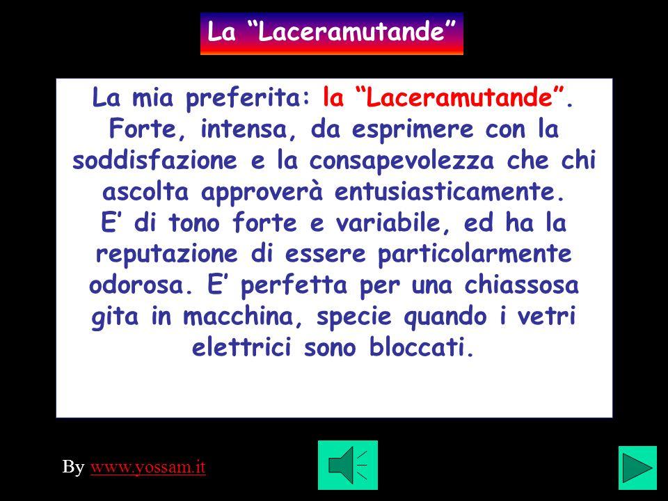 La mia preferita: la Laceramutande.