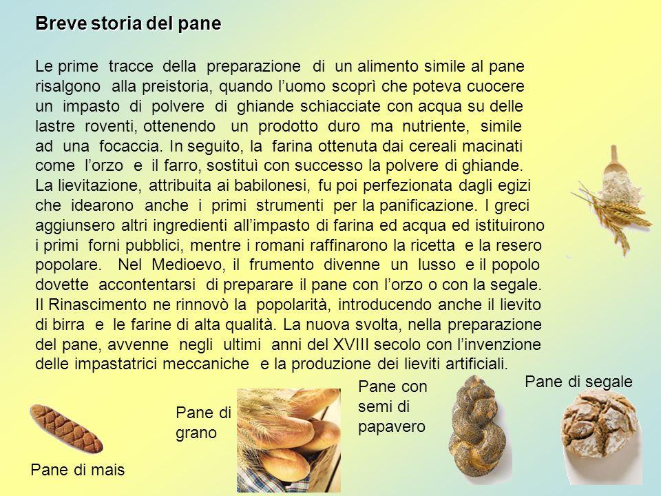 Breve storia del pane Le prime tracce della preparazione di un alimento simile al pane risalgono alla preistoria, quando luomo scoprì che poteva cuoce