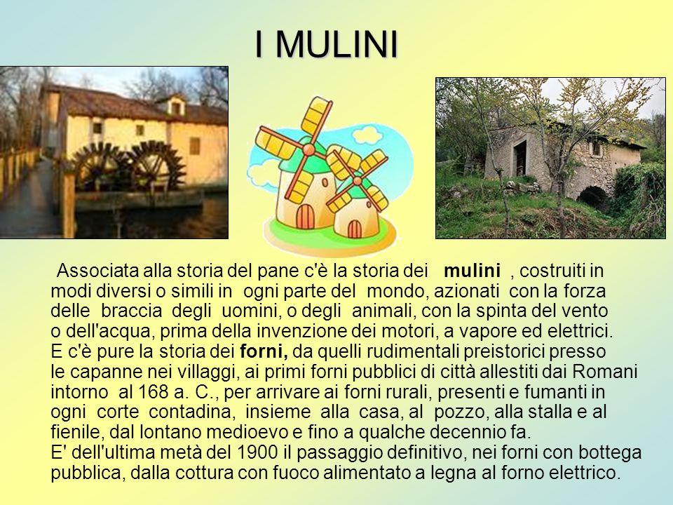 I MULINI Associata alla storia del pane c'è la storia dei mulini, costruiti in modi diversi o simili in ogni parte del mondo, azionati con la forza de
